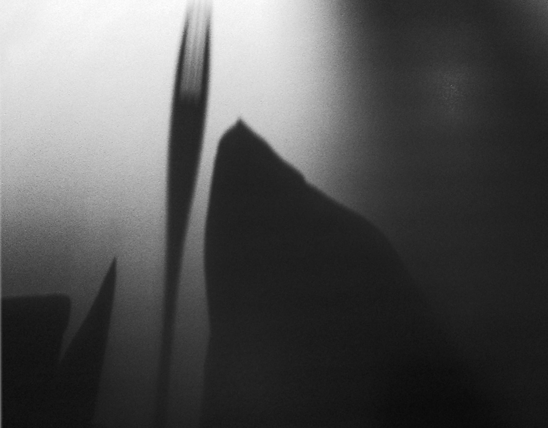shadow 9 WEB